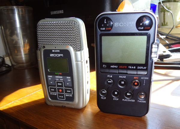 Sony PCM-M10 Review: Field Recording South Africa Travels